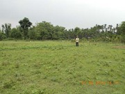Alipurduar Commercial Plot is Available for Sale at Low Cost