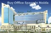 Real Estate Agent in Noida