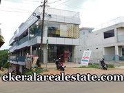 Kulathupuzha 11000 sqft Building For Sale